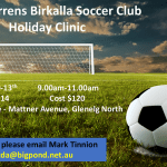 Holiday Clinics